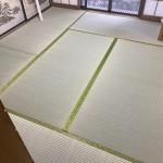 鹿沼新床3部屋 (1)
